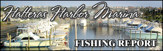 Welcome to the Hatteras Harbor Marina Fishing Report.