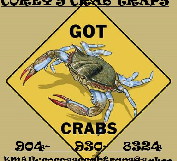 ** Commercial Crab Trap and Eel Traps **Brand New**Made in Jacksonville,Florida**